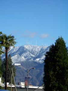Only In Snowcal - Palm Trees and Snow Vistas
